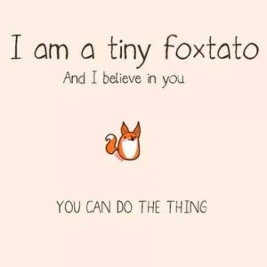foxtatobelieves