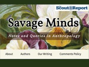 savage-800x600
