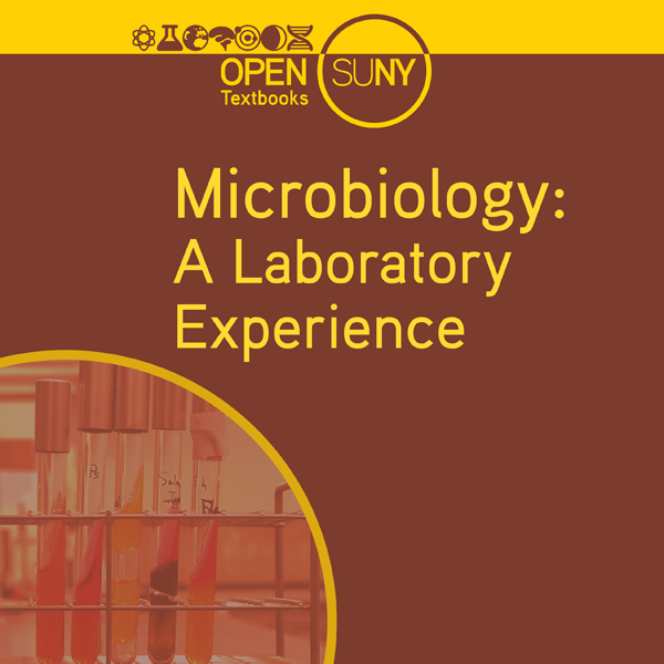 Microbiology: A Laboratory Experience, by Holly Ahern