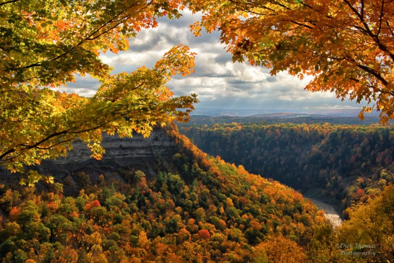 Dick Thomas – Great Bend, Letchworth State Park
