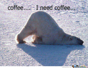 polar bear needs coffee