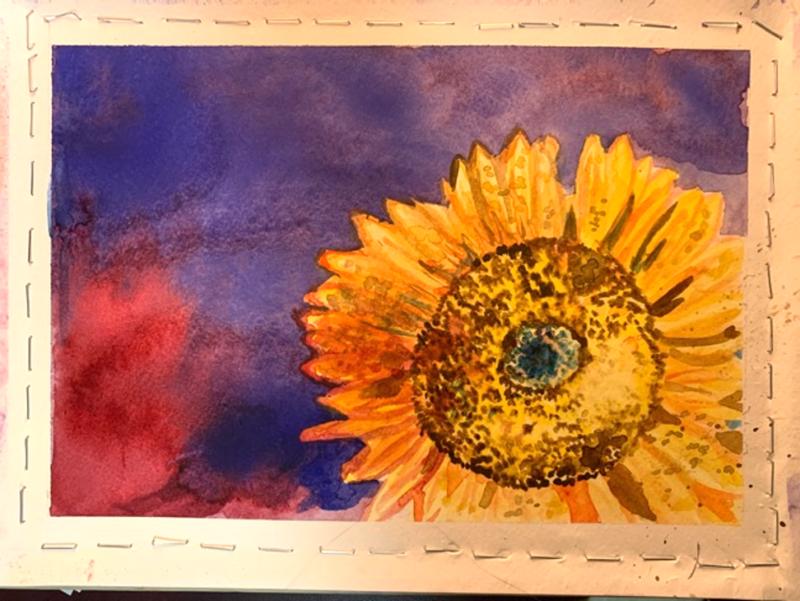 Sunflower, Watercolor by Bridgette Sroka, SUNY Geneseo