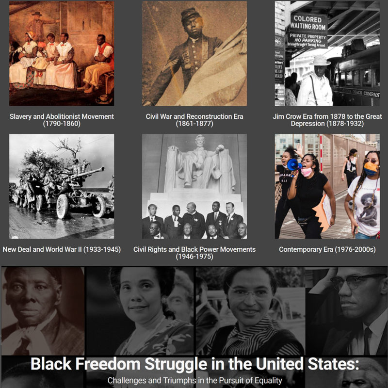 Black Freedom Struggle website collection